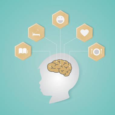 La Experiencia Cambia La Estructura Real Del Cerebro Zero