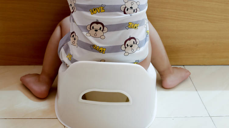 Outstanding Potty Training Learning To The Use The Toilet Zero To Three Short Links Chair Design For Home Short Linksinfo