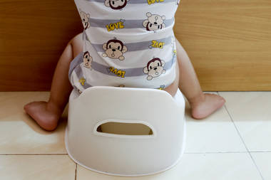 Potty Training Toilet : Potty training learning to the use the toilet u zero to three