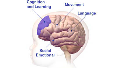 Image result for TODDLERS AND BRAIN DEVELOPMENT