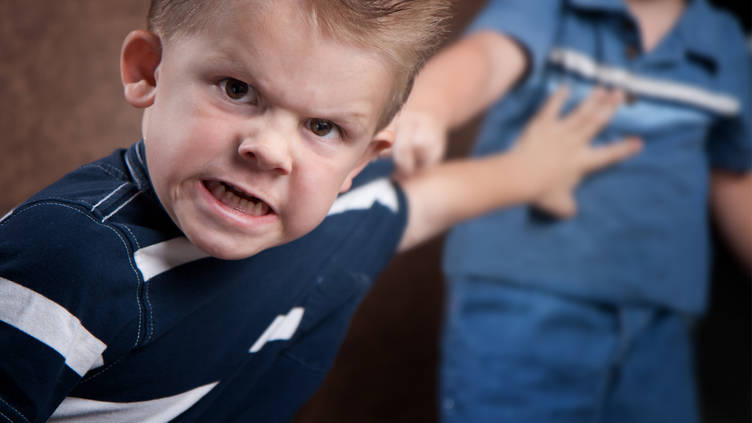 Aggressive Behavior in Toddlers